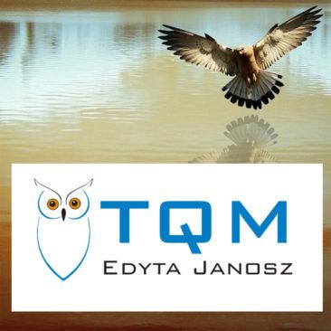 TQM – identyfikacja i strona www